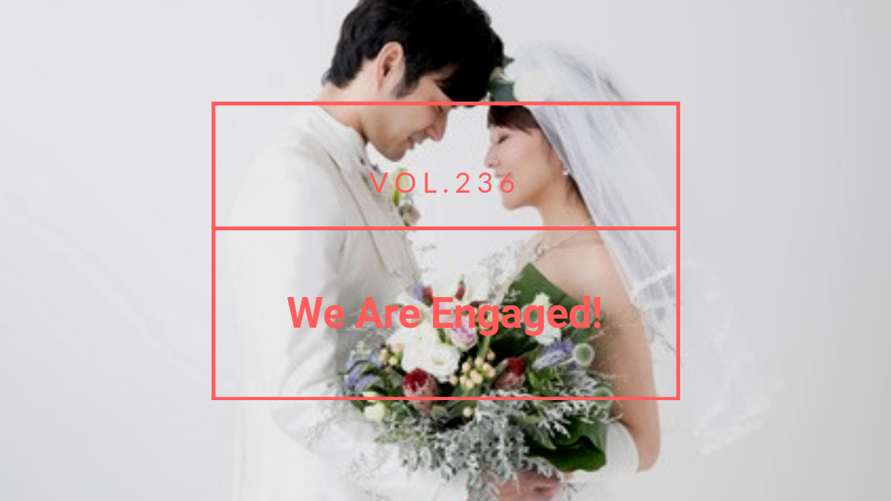 Marry a Japanese Womann: We Are Engaged!